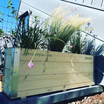 """Orto Urbano """"Sumisura"""" per un giardino pensile"""